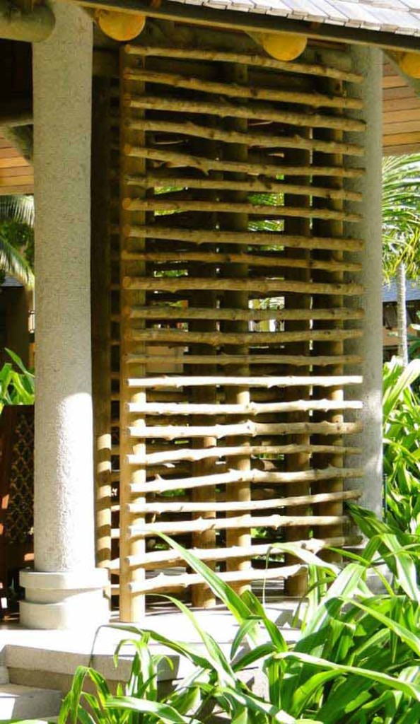 21 privacy screen in backyard garden ideas (17)