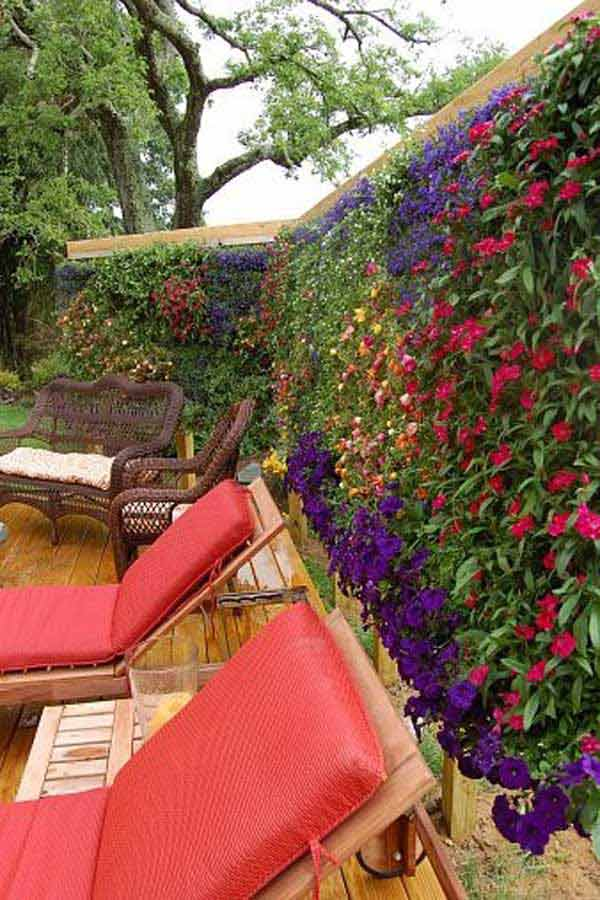 21 privacy screen in backyard garden ideas (18)