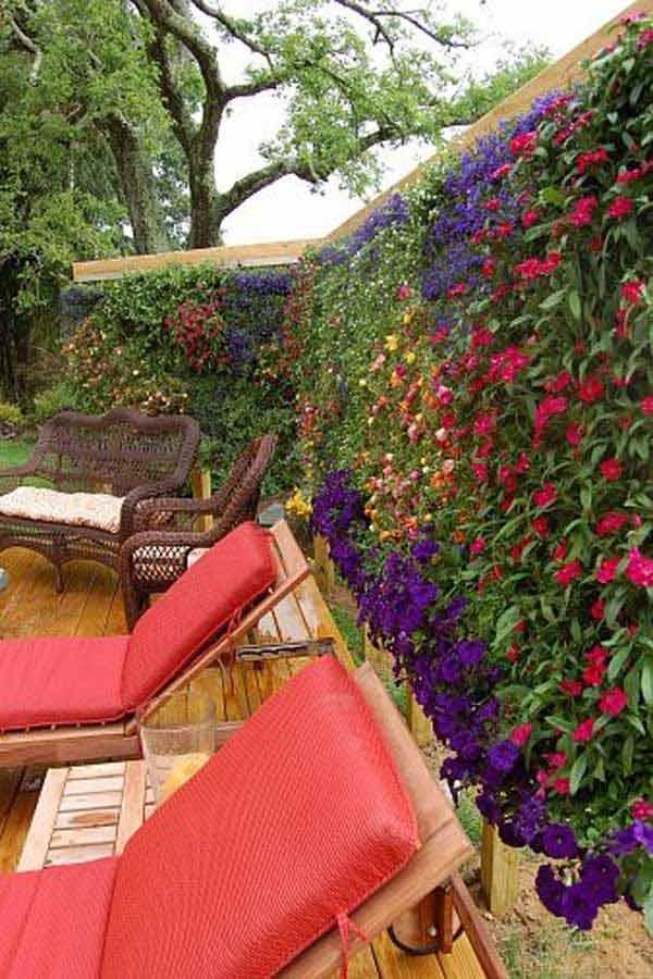 21 privacy screen in backyard garden ideas (18)