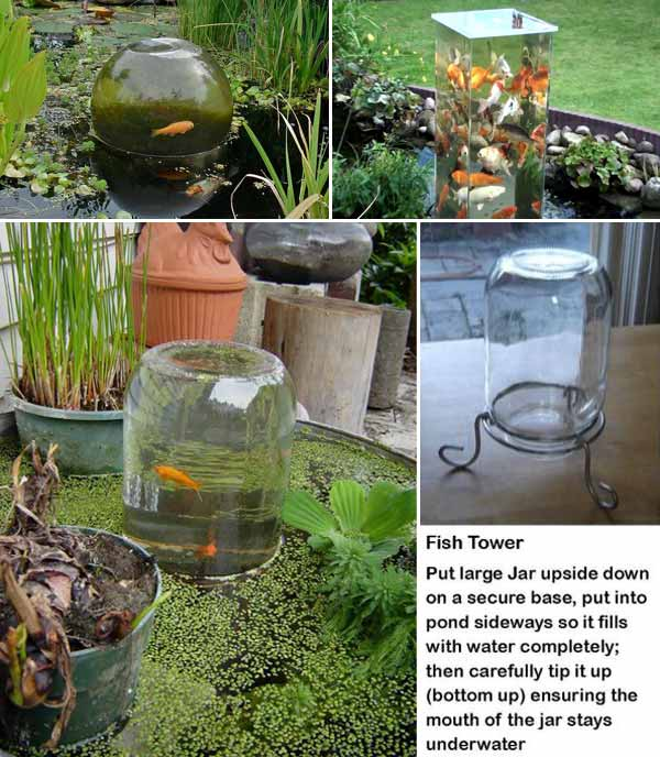 22-small-garden-backyard-aquarium-ideas (11)
