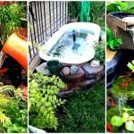 22 ไอเดีย บ่อปลาในสวนขนาดเล็ก เพิ่มชีวิตชีวาให้กับพื้นที่สีเขียวของบ้าน