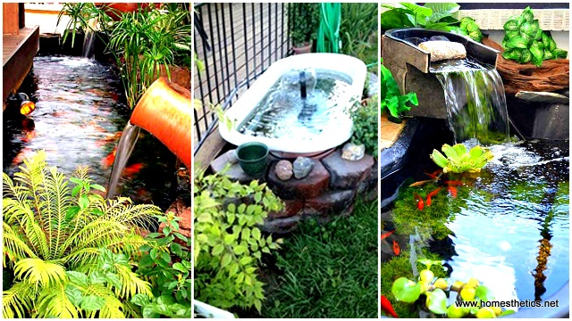 22-small-garden-backyard-aquarium-ideas (1)