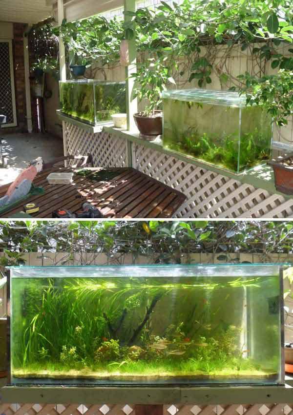 22-small-garden-backyard-aquarium-ideas (13)