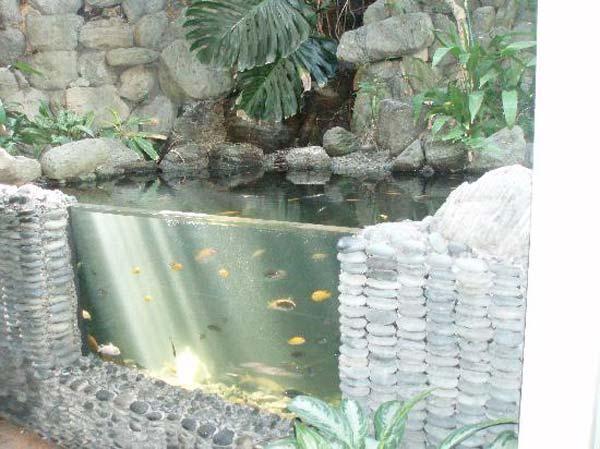 22-small-garden-backyard-aquarium-ideas (20)