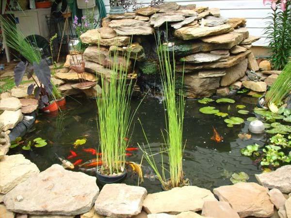 22-small-garden-backyard-aquarium-ideas (22)