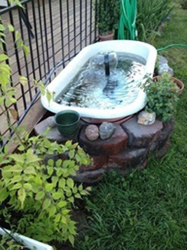 22-small-garden-backyard-aquarium-ideas (23)