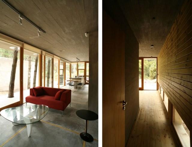 House-Among-Trees-23-1150x883