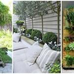 20 ไอเดียตกแต่งสวน บนพื้นที่ขนาดเล็ก สร้างความเขียวขจีแก่การใช้งานภายในบ้าน