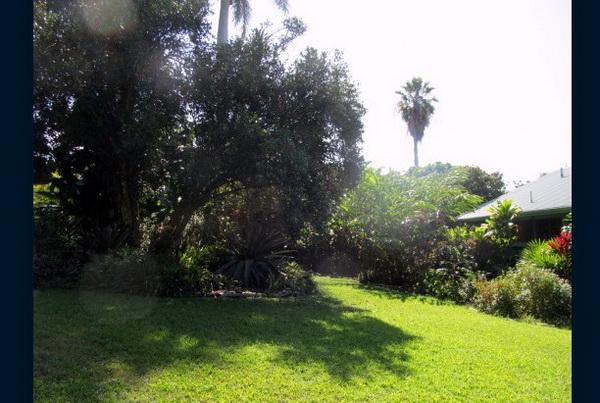 green hawaii bungalow (12)