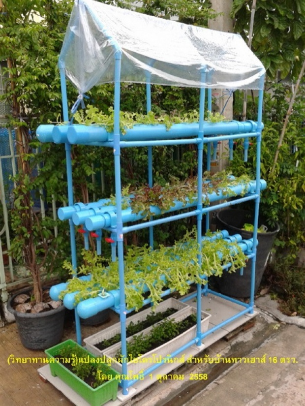 hydroponic veggie bed review (1)