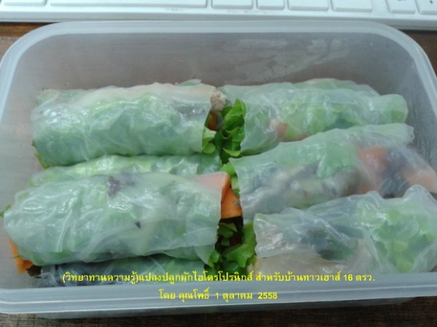 hydroponic veggie bed review (10)