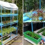 Review : เทคนิคทำแปลงปลูกผักไฮโดรฯ ไซส์มินิ สำหรับบ้านทาวน์เฮาส์พื้นที่เพียง 16 ตร. วา