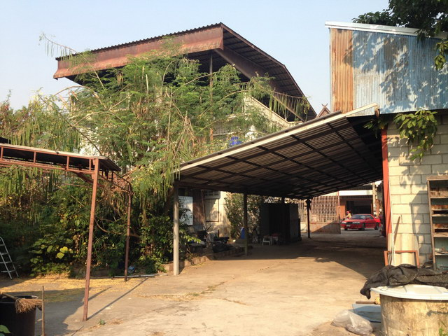 oxotel chiangmai hostel review (7)