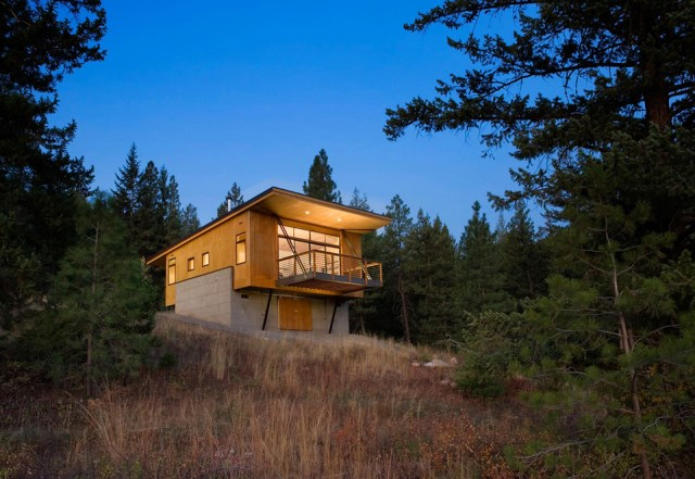 pine-forest-cabin-1