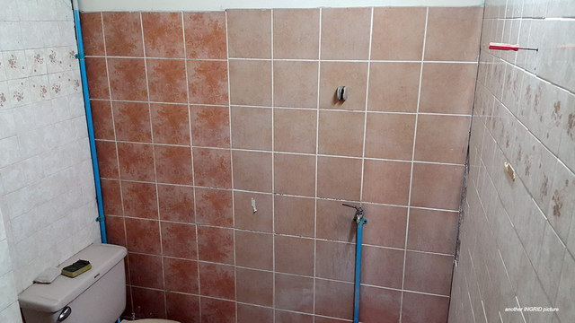 restroom renovation review (2)