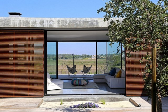 stylish-glass-doors-coupled-with-wooden-textures