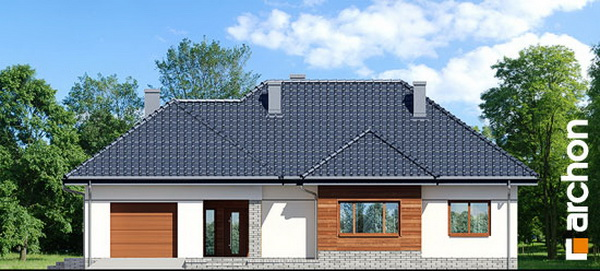 1 storey hip roof comfortable contemporary house (3)