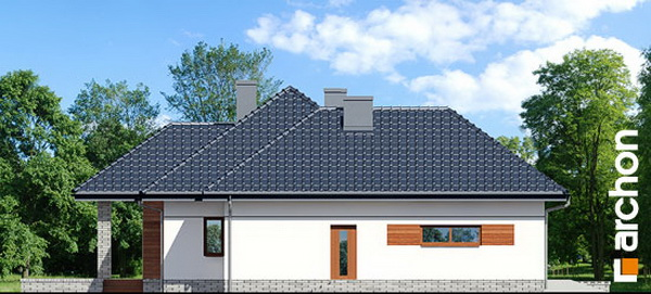 1 storey hip roof comfortable contemporary house (4)