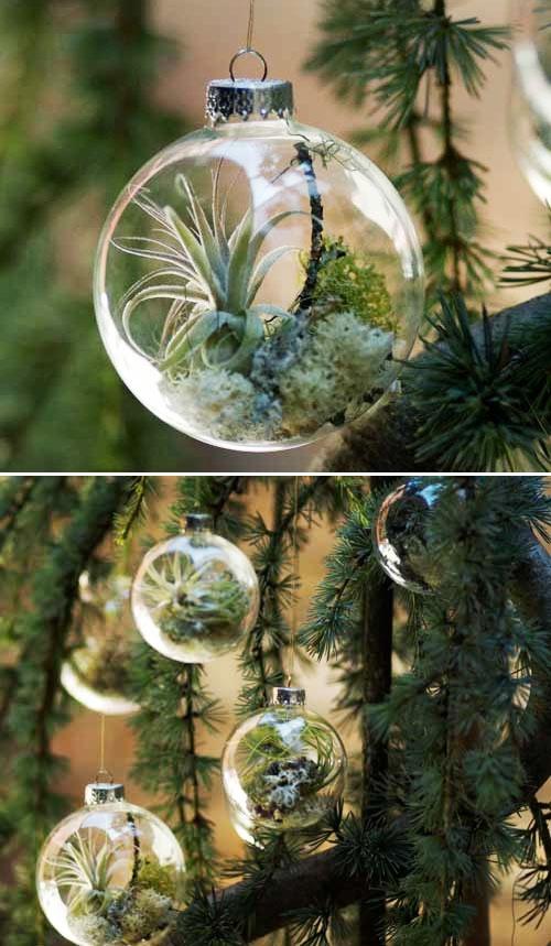 15 terrarium garden ideas (11)