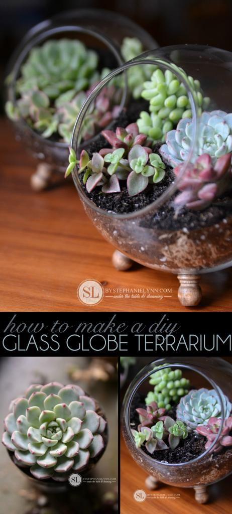 15 terrarium garden ideas (13)