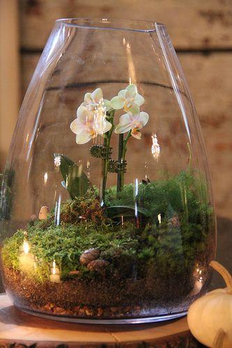 15 terrarium garden ideas (2)