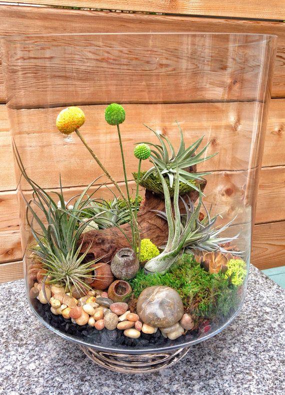 15 terrarium garden ideas (4)