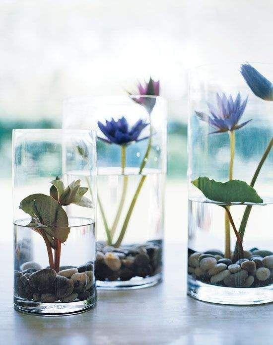 15 terrarium garden ideas (6)