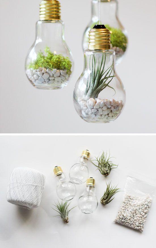 15 terrarium garden ideas (8)