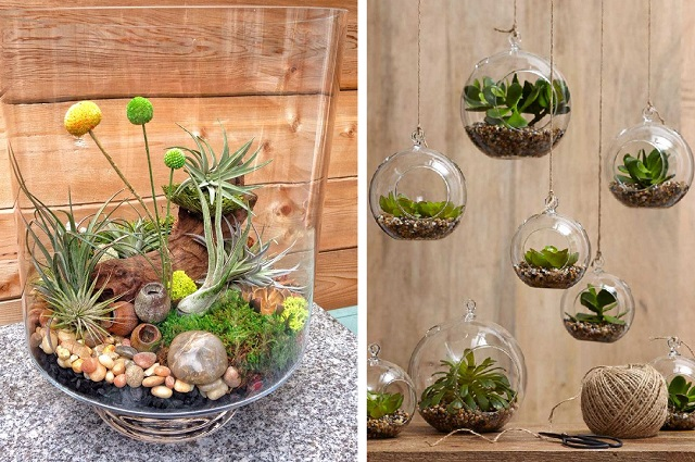 15 terrarium garden ideas cover