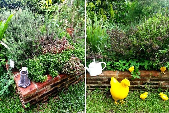 6-steps-to-grow-home-veggie-garden-cover