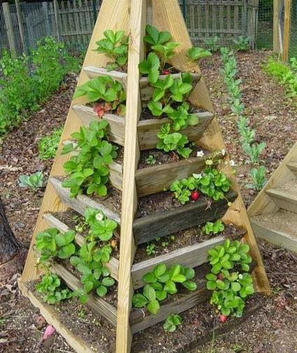 7 ideas for small garden (6)