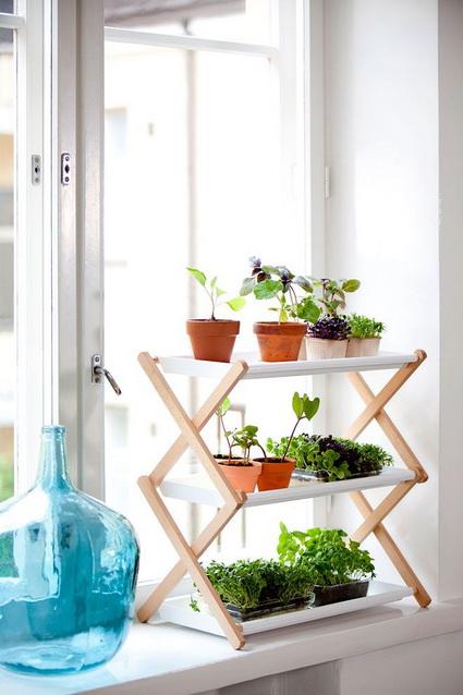 8 Ideas for interior plants (1)