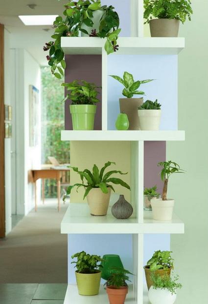 8 Ideas for interior plants (2)
