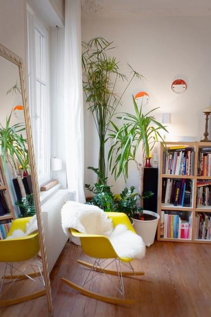 8 Ideas for interior plants (4)