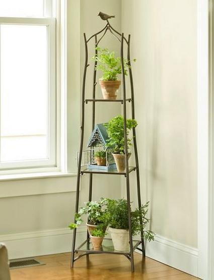 8 Ideas for interior plants (5)