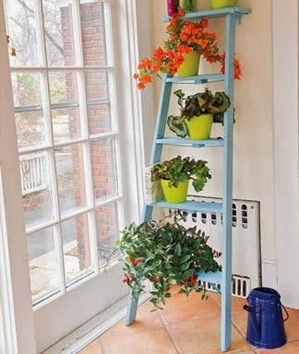 8 Ideas for interior plants (7)