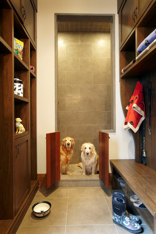 8 interior ideas for dog lover (7)