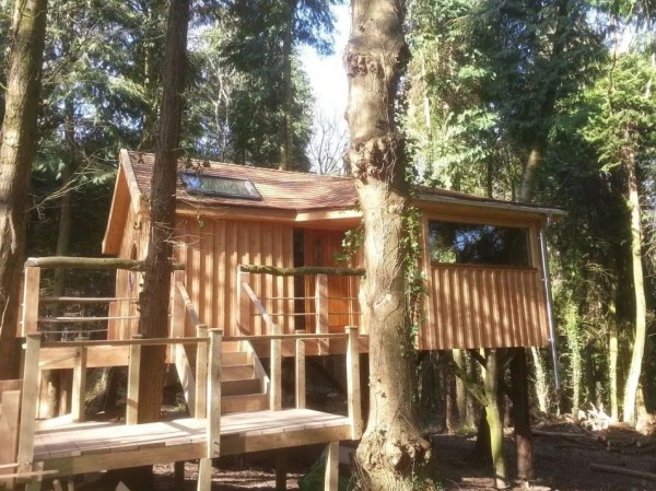 Bird-House-TreeHouse-in-the-Woods-of-Fordscroft-Farm-in-Somerset-England-0014-600x449