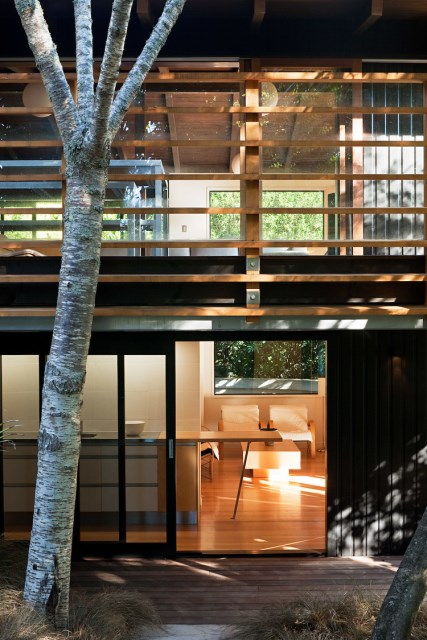 Glade-House-modern-home-with-low-pitched-gabled-roof-raking-ceilings-and-exposed-rafters-10