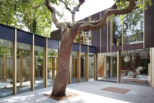 Pear-Tree-House-in-South-London-by-Edgley-Design-4