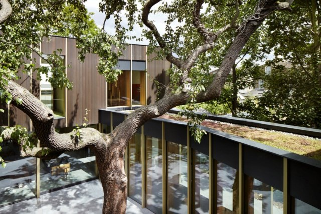 Pear-Tree-House-in-South-London-by-Edgley-Design-5