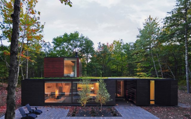 Sylvan-Retreat-textured-wood-structure-with-a-green-roof-1