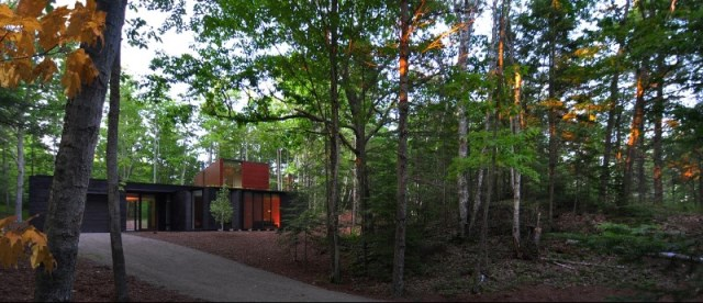 Sylvan-Retreat-textured-wood-structure-with-a-green-roof-18