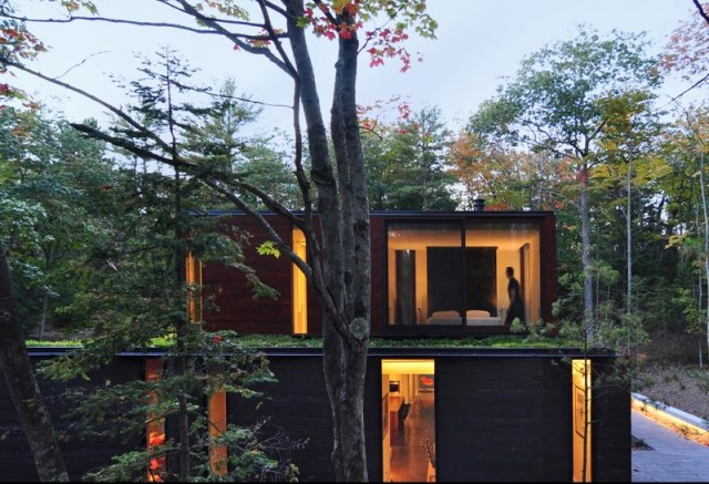 Sylvan-Retreat-textured-wood-structure-with-a-green-roof-3