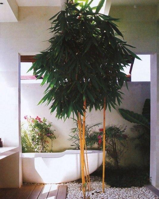 interior green garden ideas (1)