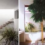 """รวมไอเดีย """"สวนสีเขียวในบ้าน"""" สร้างบรรยากาศธรรมชาติให้อยู่ในทุกอณูการใช้ชีวิต"""