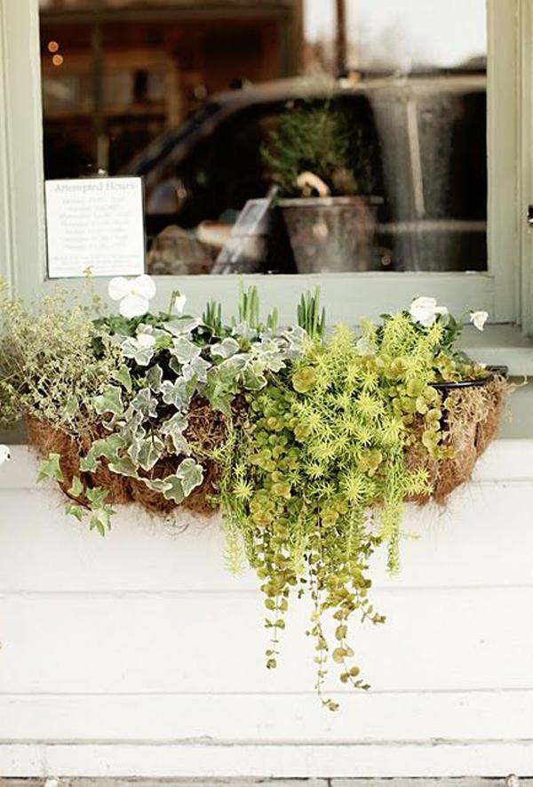 natural-diy-small-window-boxes