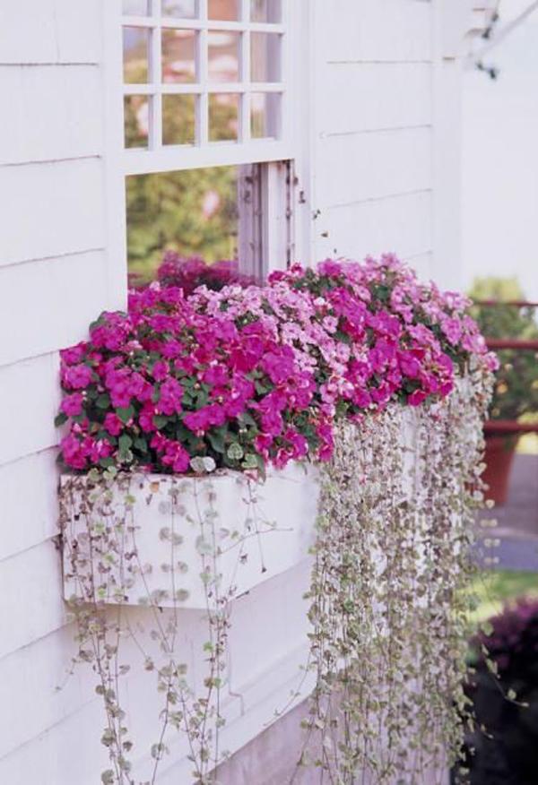 pretty-window-box-planters