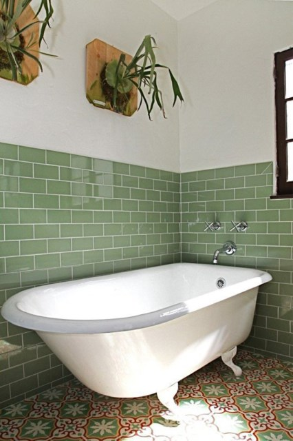 staghorn-fern-in-bathroom-design