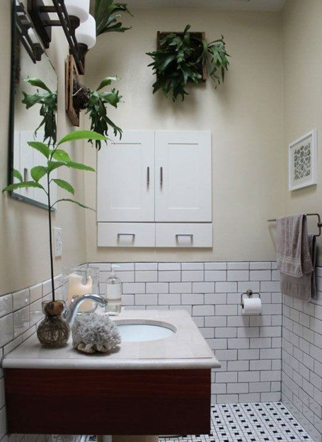staghorn-fern-in-bathroom-planter